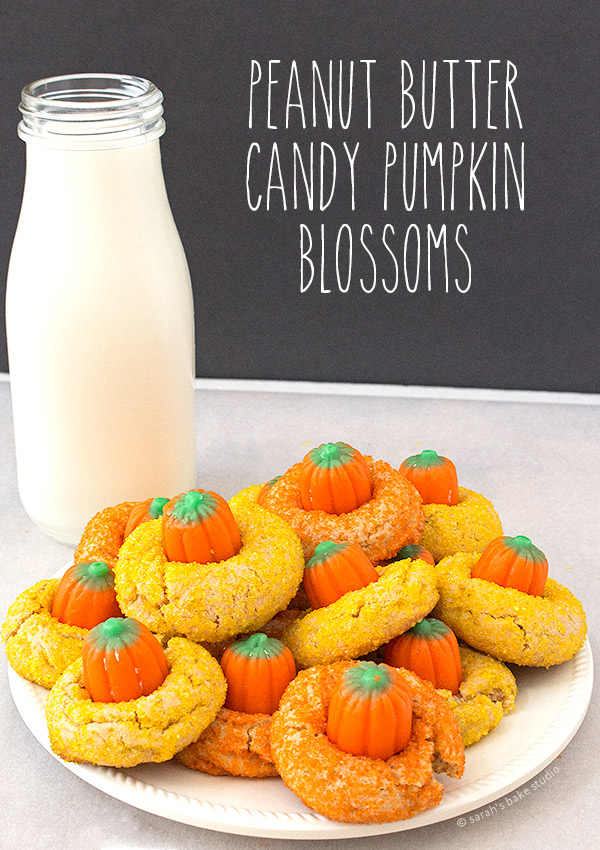 Peanut Butter Candy Pumpkin Blossoms – your favorite peanut butter cookie with the Halloween twist of yellow and orange sanding sugar and a candy pumpkin.