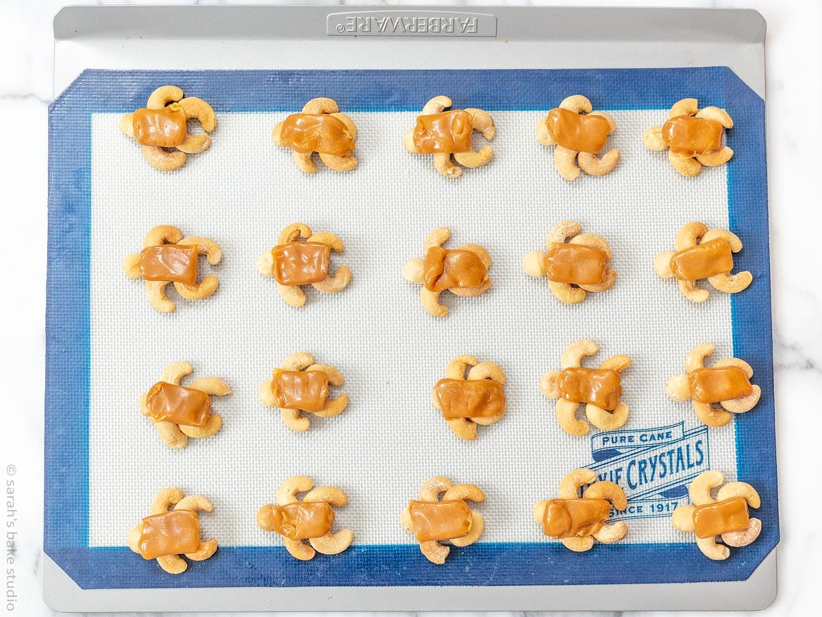 Chocolate Tortoises - delicious nutty homemade chocolate and caramel candies created with cashews, macadamia nuts, and pecans; a too cute and fun twist on Chocolate Turtles.