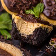 mini baileys irish cream cheesecakes